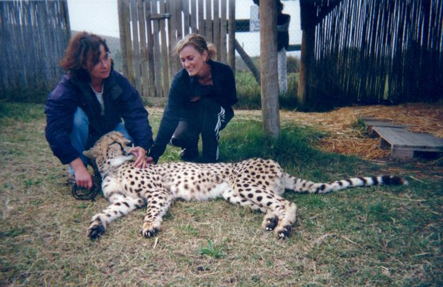 me-and-cheetah