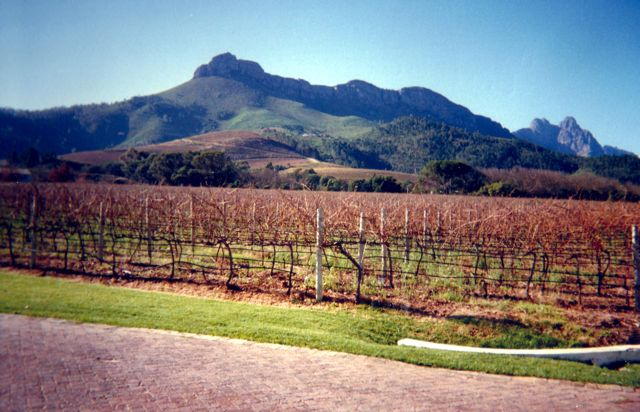 Stellenbosch on a clear day.