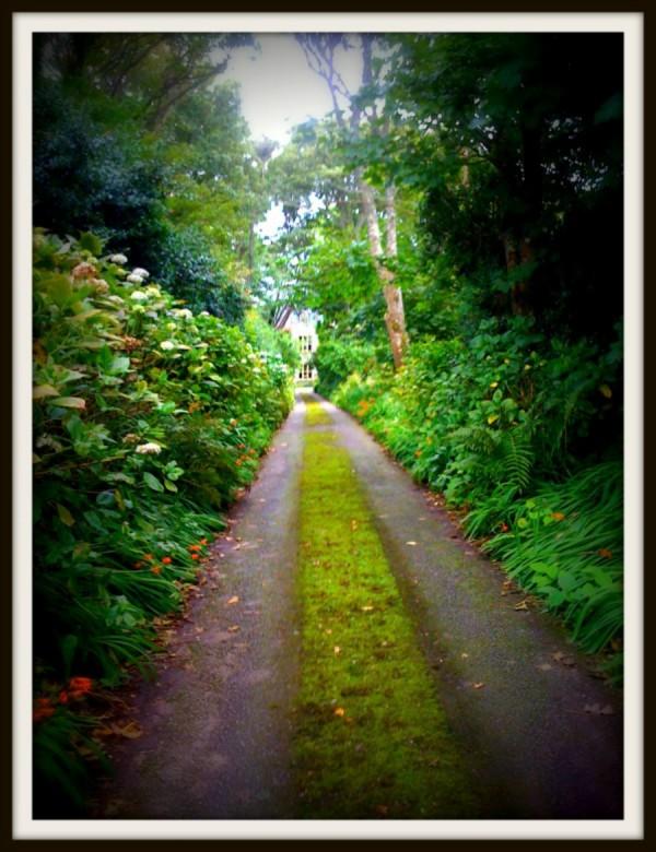 Road to Ardtarmon2