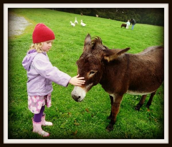 Bridget and Donkey