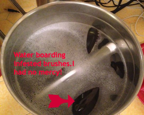 Lice brushes soakingpic