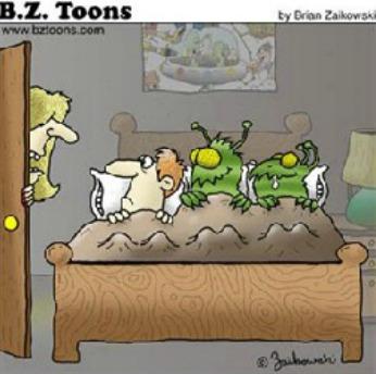 bedbug_cartoonpic