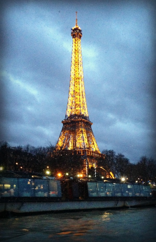 Shannon Bradley Colleary, Eiffel Tower, traveling with kids in Paris