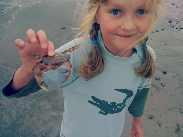 Rowan and crab
